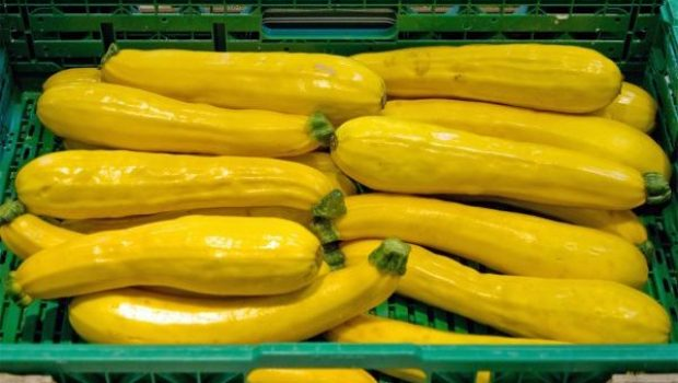 Golden_zucchinis_produced_in_the_Netherlands_for_sale_in_a_supermarket_in_Montpellier,_France,_April_2013