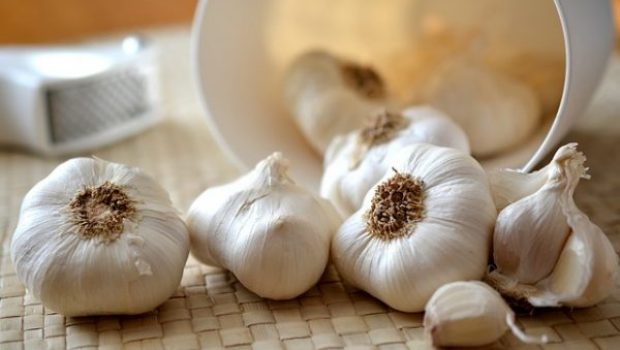 garlic-545223_640