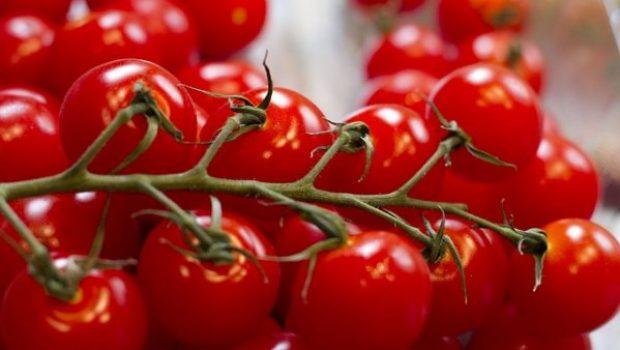 grape-tomatoes-2919375_640